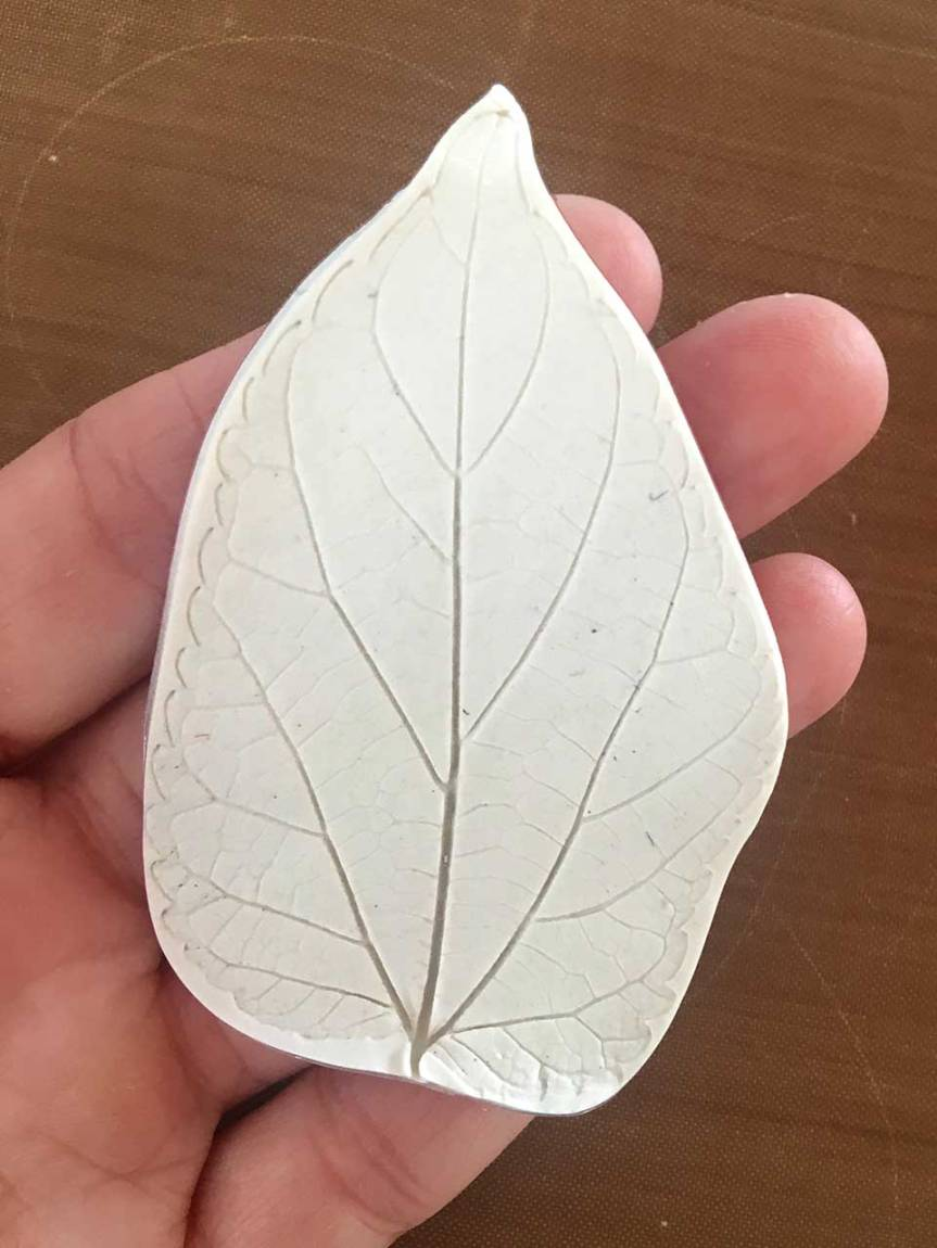 5-leaf-cut-in-hand